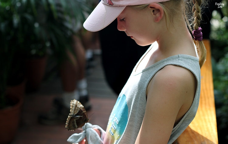 Butterfly on a girl's shirt at Key West Butterfly Nature Conservatory