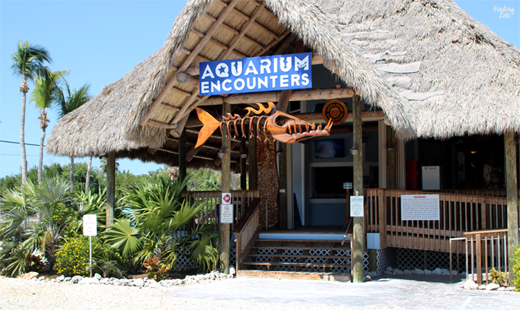 Entrance at Aquarium Encounters Florida Keys