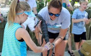 Girl petting alligator at Aquarium Encounters Florida Keys