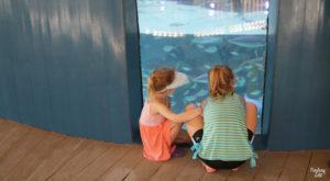 Girls watching fish at Aquarium Encounters Florida Keys