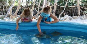 Kids petting baby stingray at Aquarium Encounters Florida Keys