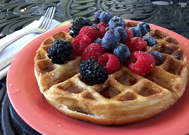 Waffles with fresh berries at Garden House bed and breakfast in Key West Florida