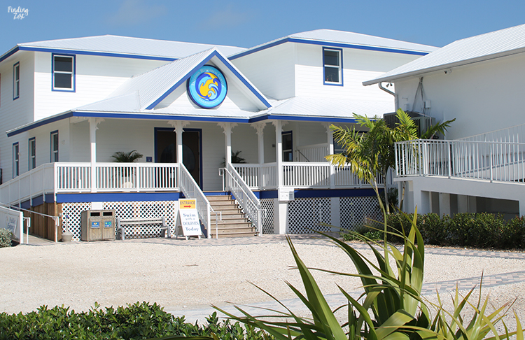 Welcome center at Dolphin Research Center Florida Keys