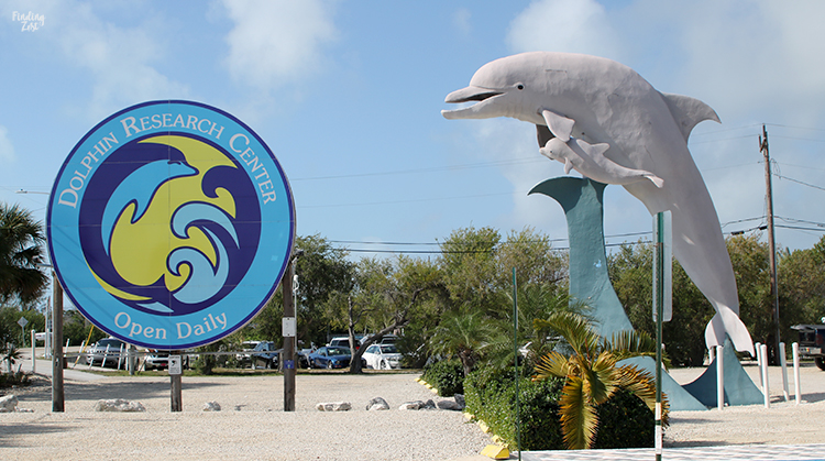 Welcome sign at Dolphin Research Center Florida Keys