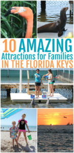 Looking for an amazing family adventure? Here are 10 fun family attractions in the Florida Keys that are a must-see when you visit! These Florida vacation destinations are sure to be a hit for families of all ages.