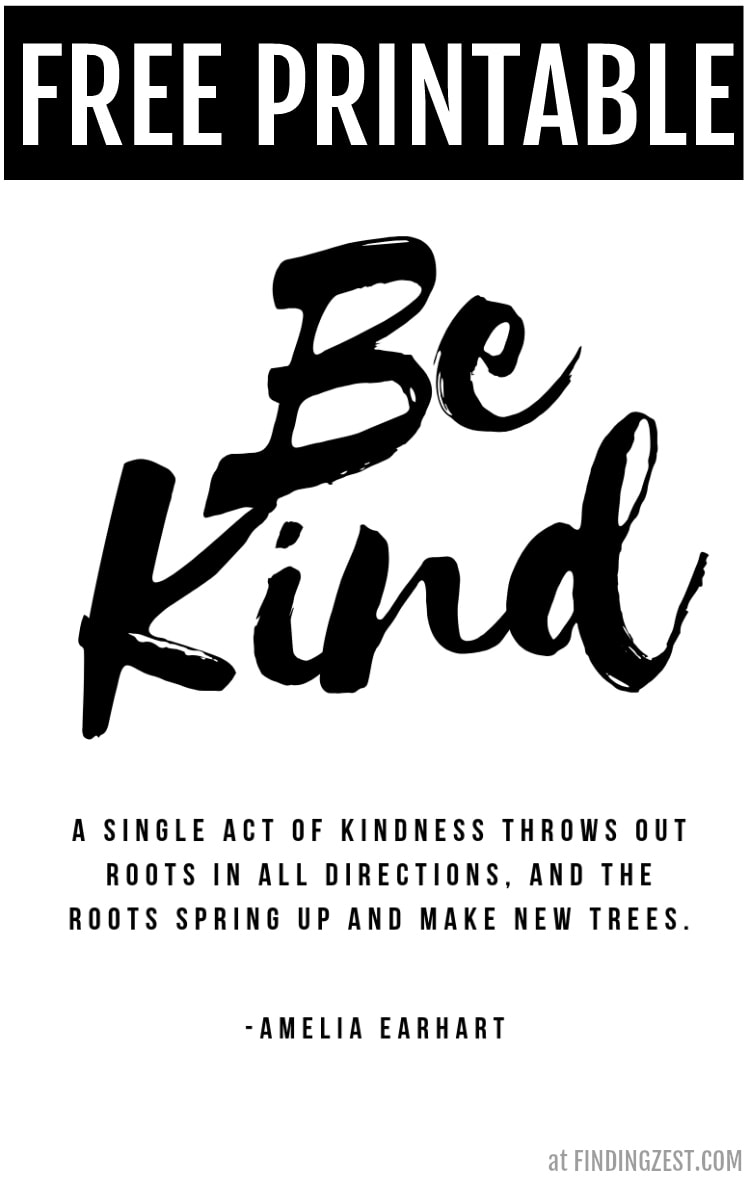 This Be Kind printable quote from Amelia Earhart was created in celebration of the release of Diary of an Awesome Friendly Kid: Rowley Jefferson's Journal by Jeff Kinney, a new spin-off of the Diary of a Wimpy Kid series. Print it out as as a great reminder of how kindness can spread!