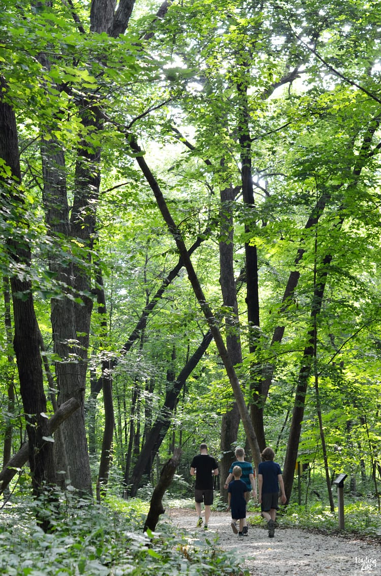 Walking trails at Hartman Reserve Nature Center